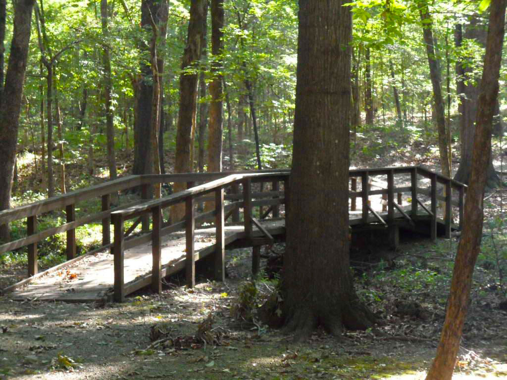 Physical Fitness Trail
