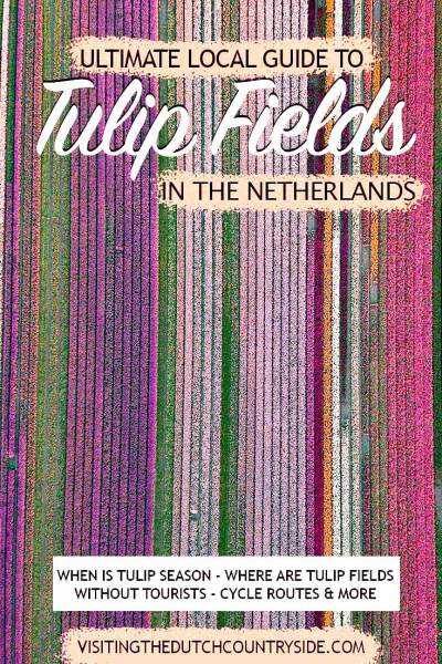 Discover the local tulip fields in Noord- Holland, The Netherlands, without tourists including tulip fields in The Netherlands near Amsterdam with great day trips. Explore and travel the beautiful tulip fields of The Netherlands with day trip from Amsterdam in spring. Traveling to the beautiful tulip fields of Noord- Holland must be on your bucket lists.