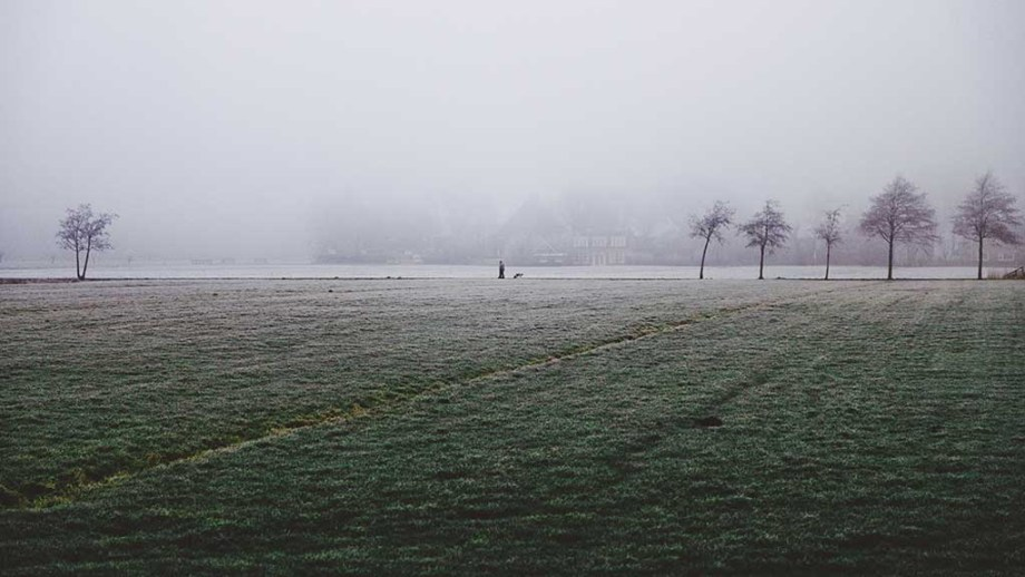 Friesland, The Netherlands during a foggy winter morning and a grassland in front of it