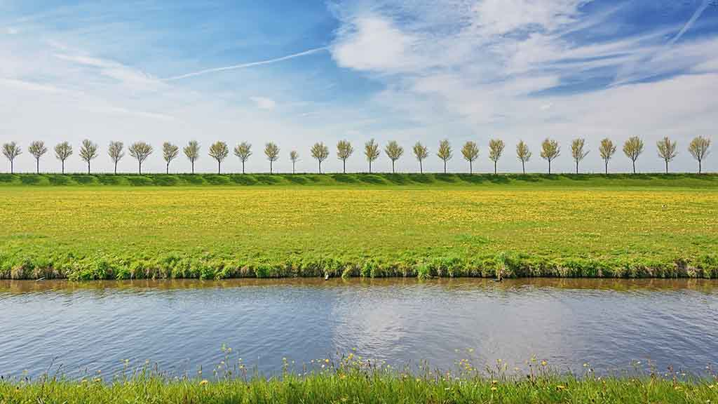Dike with a row of trees in the Beemster Polder, a cultural landscape located north of Amsterdam, dating from the early 17th century, and an exceptional example of reclaimed land in the Netherlands