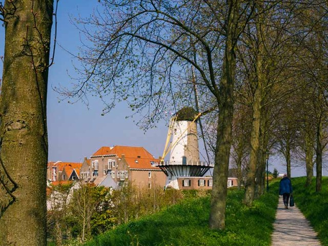 view on windmill and historic buildings from rampart in Willemstad, Noord- Brabant, The Netherlands