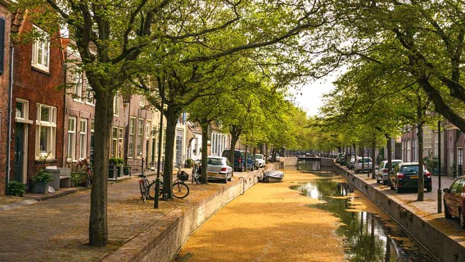 A view on a canal filled with old leafs and canal houses surrounded in city of Enkhuizen, The Netherlands