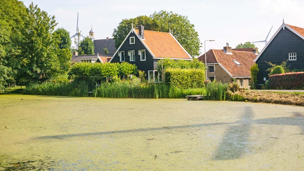 View on a pond in front of Dutch wooden houses in the village of Geervliet, The Netherlands