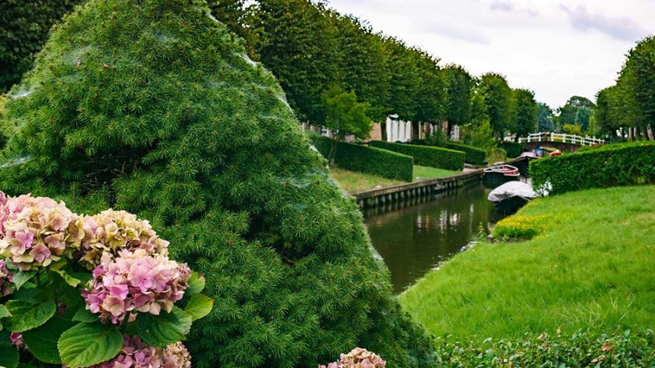 view on 'overtuinen' gardens and a canal in the town of IJlst, Friesland, The Netherlands