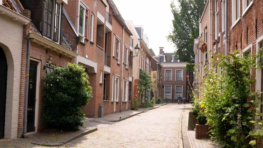 view on a cobblestoned street and old dutch buildings in the city of Leeuwarden, The Netherlands