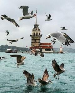 Istanbul Instagram