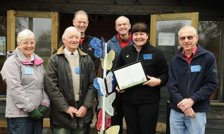 North West in Bloom awards success for gardening volunteers