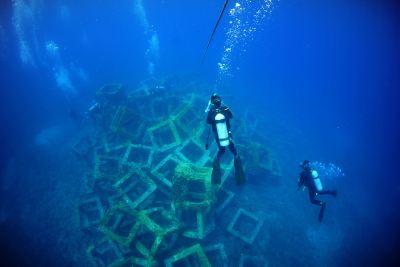 Diving Spots | VISIT OKINAWA JAPAN