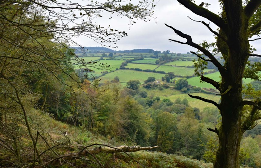 Views to the Welsh Hills