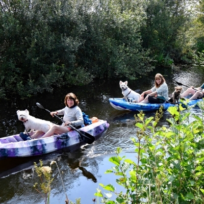 Activities in Shropshire