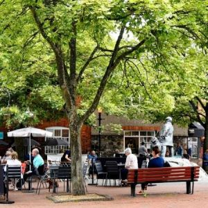 Festival Square cafe culture