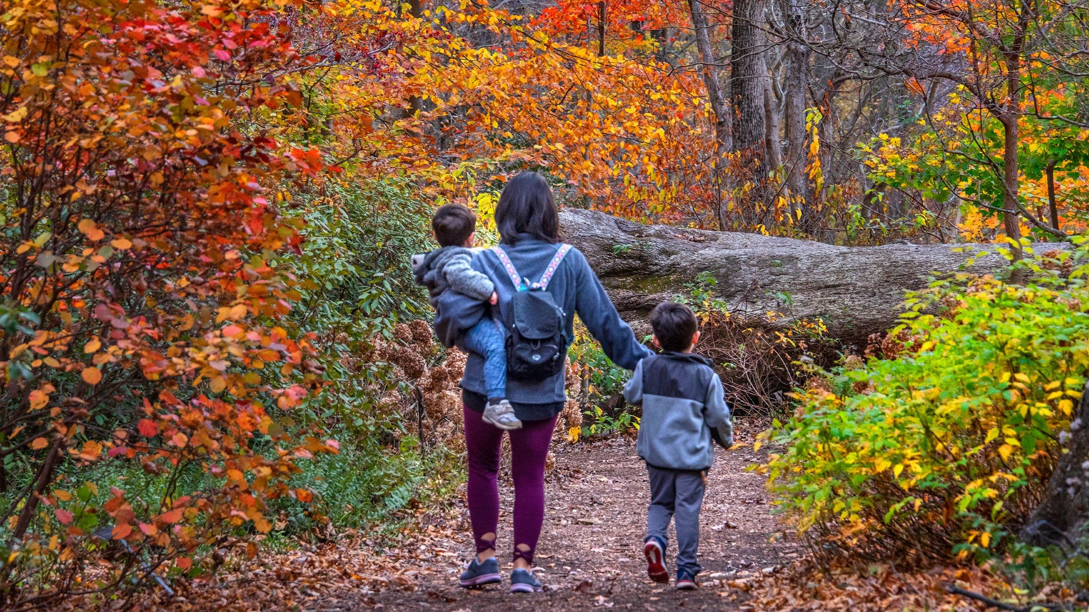 Top Spots To View Fall Foliage In Greater Philadelphia Visit Philadelphia