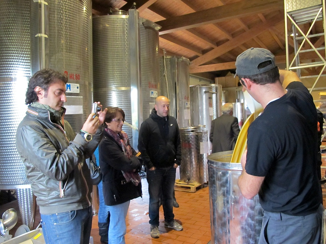 Mosto in fermentazione