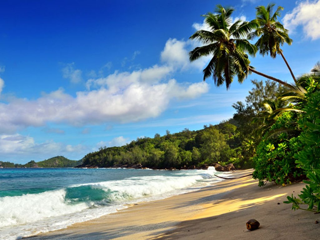 Romantic Beach Destinations in India  Honeymoon Vacation