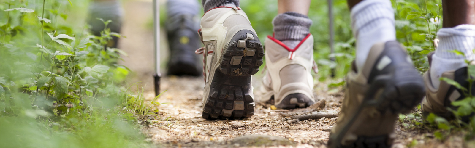 Foot and ankle patients walking in woods