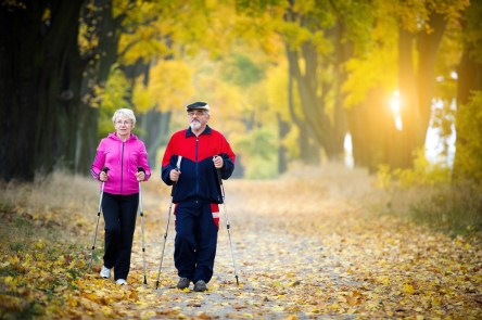 Old Couple in the Fall