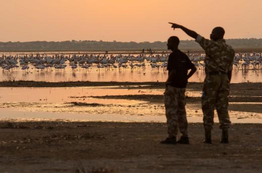 Fiebig Turkana-6716
