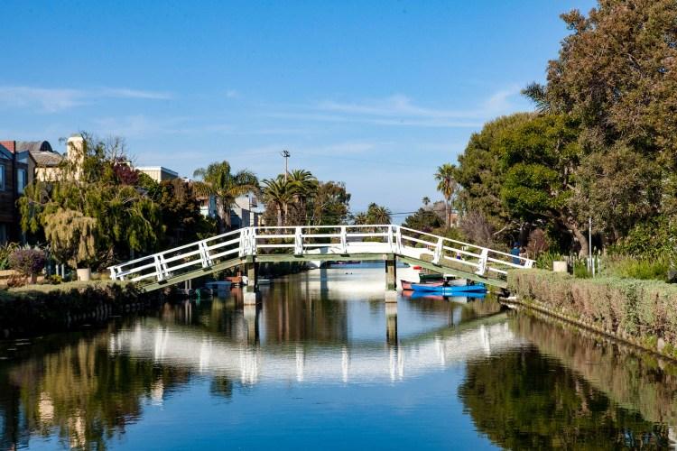 Venice Beach Fun-110-X3