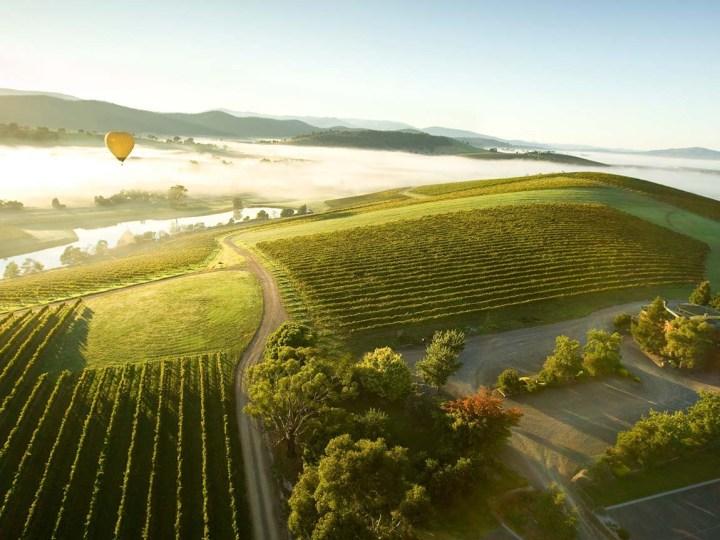 Yarra Valley Australia Wine