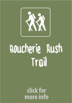 Boucherie Rush Trail West Kelowna