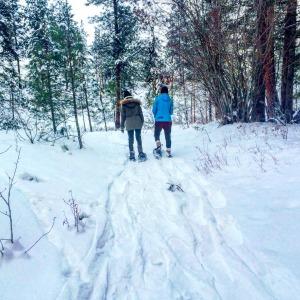 snowshoeing west kelowna telemark