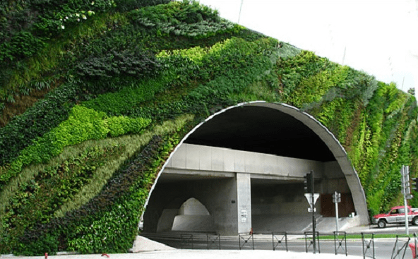 Application and Functions of Green Wall