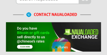 Latest Naijaloaded Theme Free Download [July Edition]