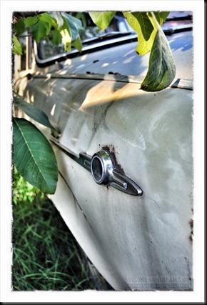 rottencars800-017