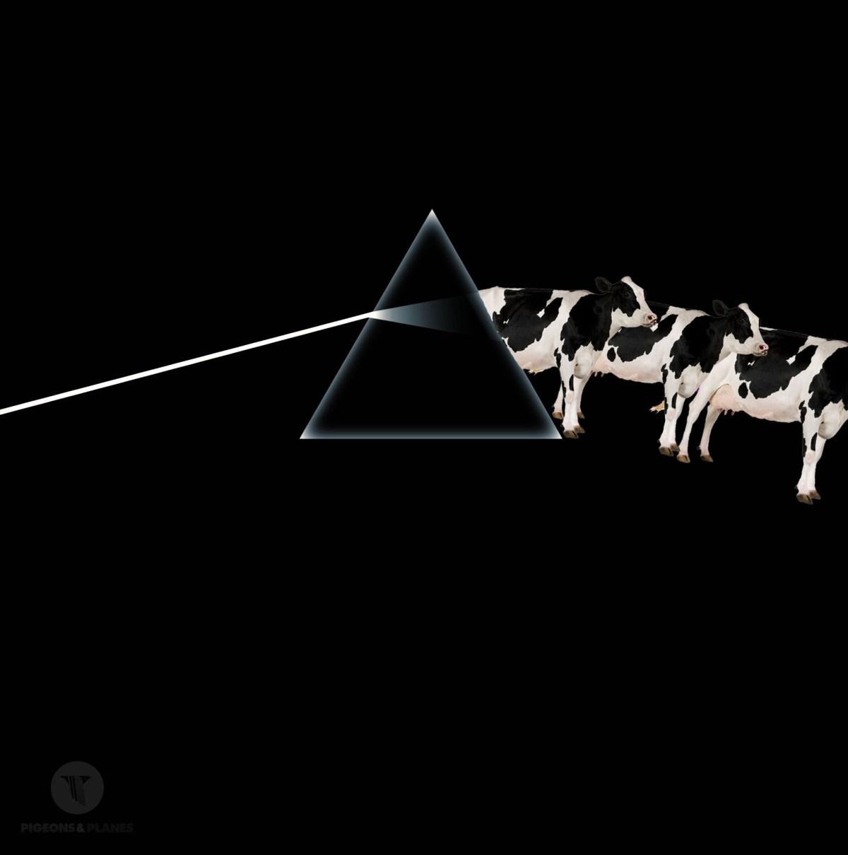 Pink Floyd the dark side of the moo