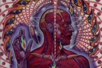 Lateralus Cover