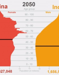 China india share also animation comparing vs population pyramids rh visualcapitalist