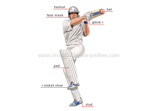SPORTS & GAMES :: BALL SPORTS :: CRICKET :: CRICKET PLAYER