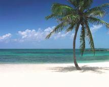 Atlantis Paradise Island Bahamas Beaches