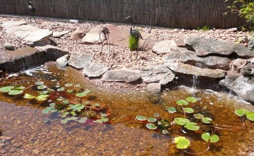 Concrete Garden Fish Pond