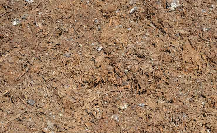 Improve the quality of your soil with an organic compost