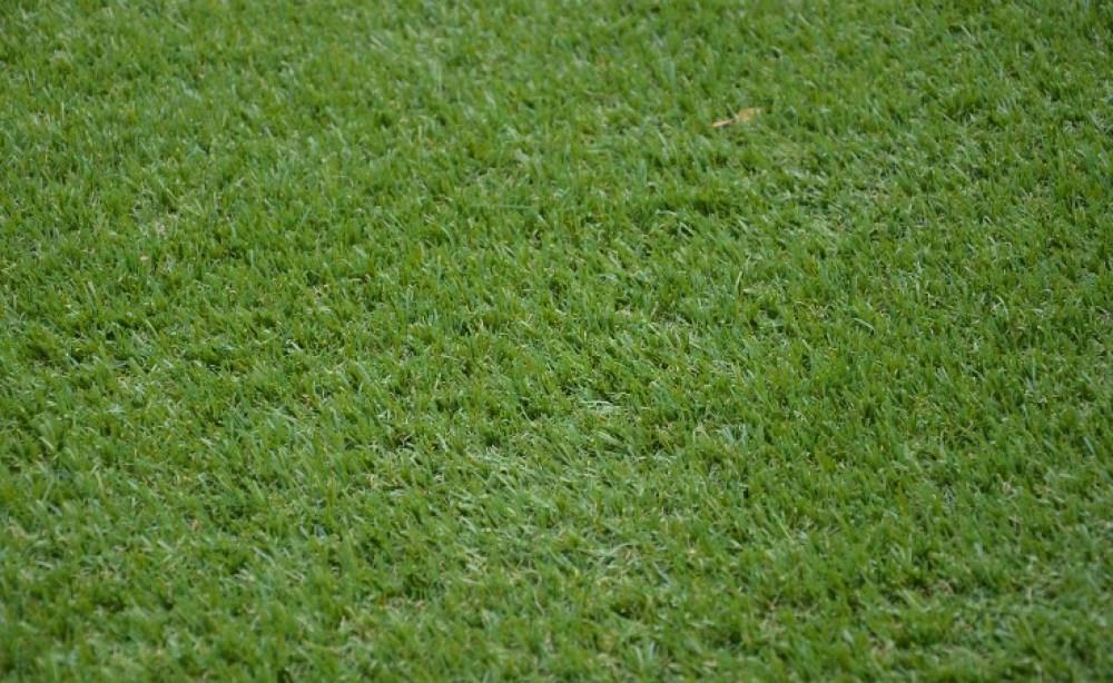 Burnside Synthetic Grass