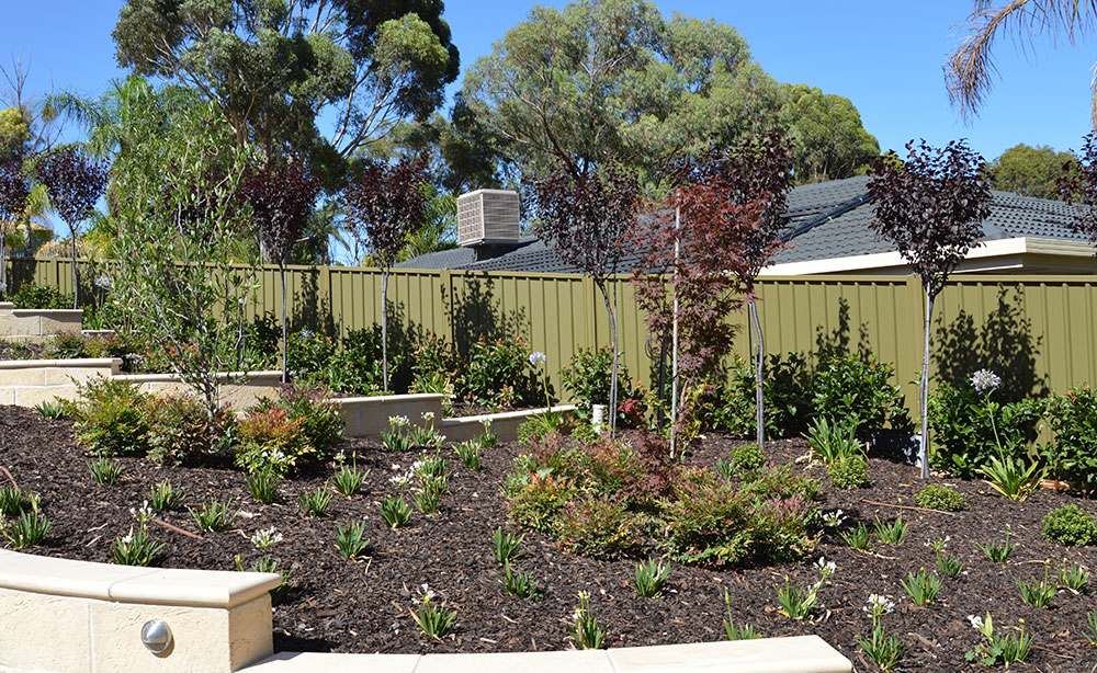 Drip Irrigation Adelaide | Drip Line Irrigation Systems