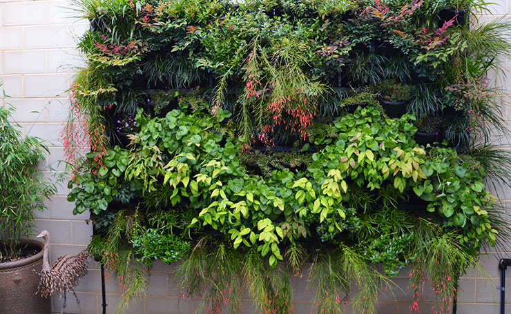 Large Wall Vertical Garden