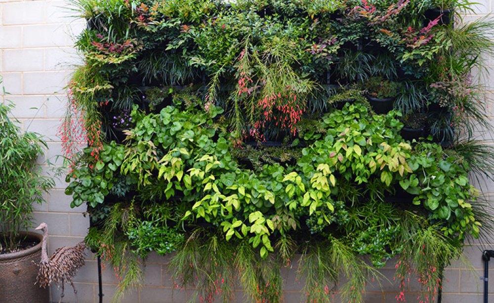 Large Wall Vertical Garden