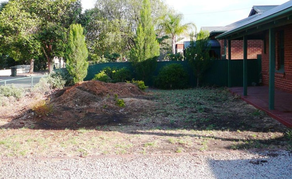 Front Yard (Before)
