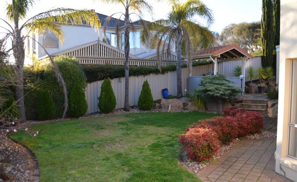 Lawn Area (Before)
