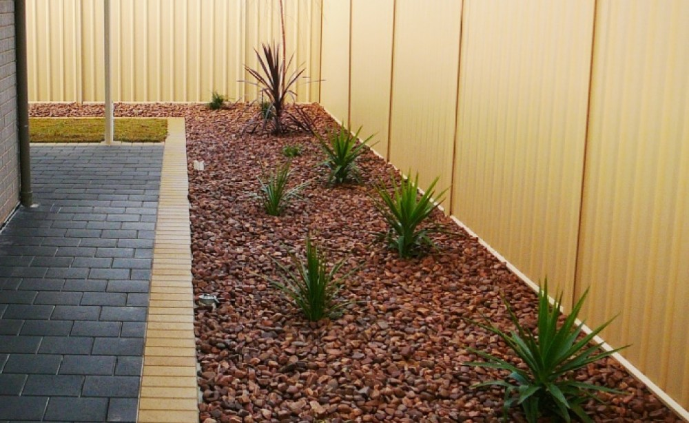 Native Plants With River Pebbles