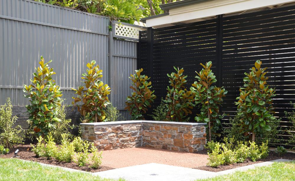Garden Beds & Plants