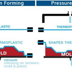 Engineering Process Diagram Hammerhead Shark Anatomy Thermoforming