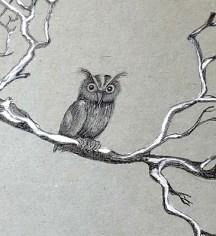 owl, pencil hb, 2b, white