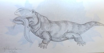 ophiacodon, pencil hb