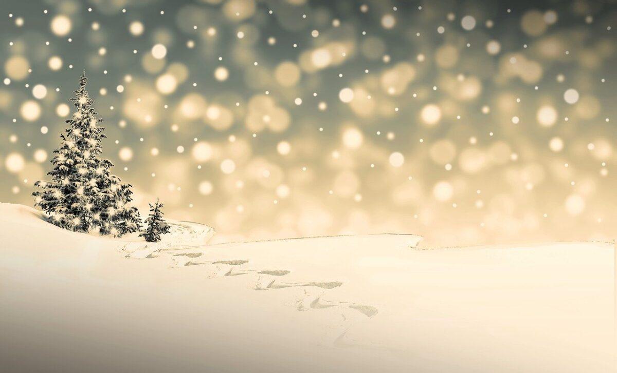 Mi piace ricordare le nostre lunghe serate invernali, mi piace ricordare quei momenti di intensità fatti di risate e allegria. Auguri Di Natale 20 Frasi Originali Per Il Fidanzato