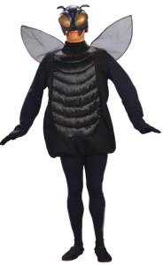 mosca travestimento