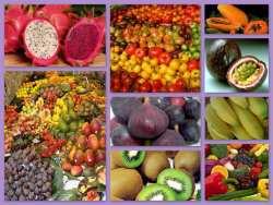 Alimenti alcalinizzanti