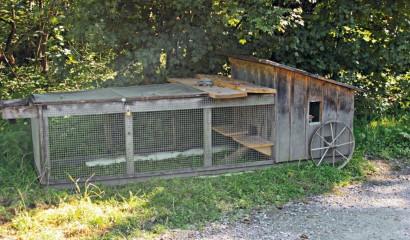 Piccolo pollaio mobile per 45 galline  Vita in campagna